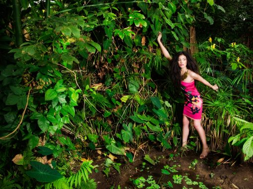 Viva Magazine In The Jungle
